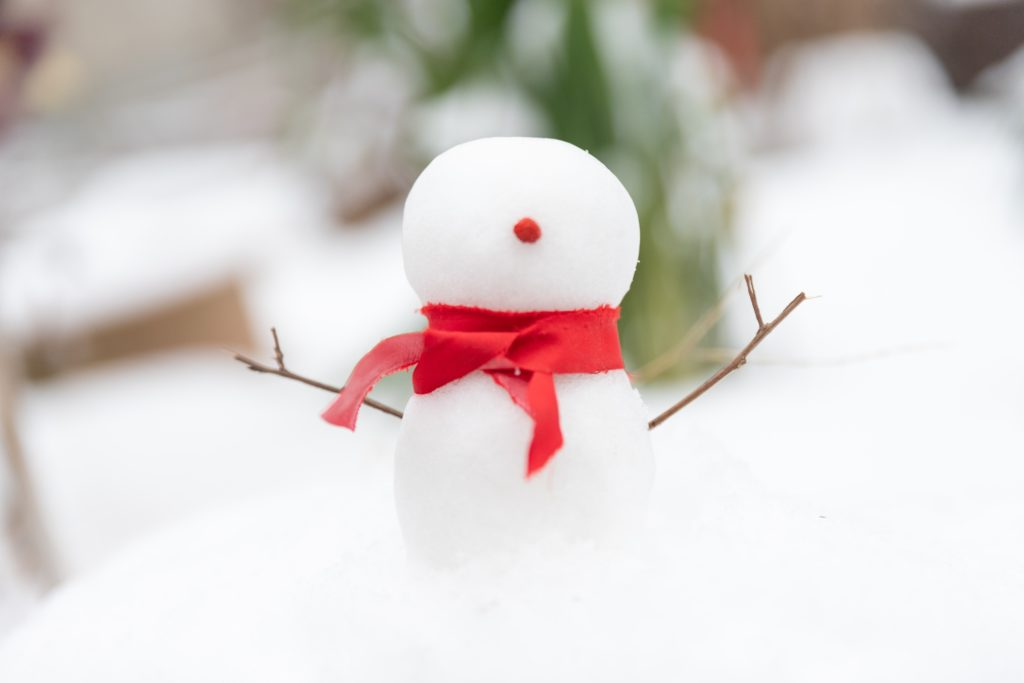 Snowball effect, la magie du dividende